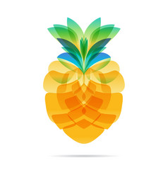 Pineapple design on white vector