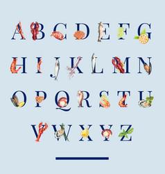Seafood alphabet design with octopus crayfish vector