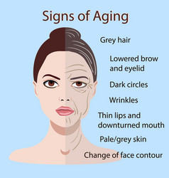 Signs of aging face with two types of skin vector