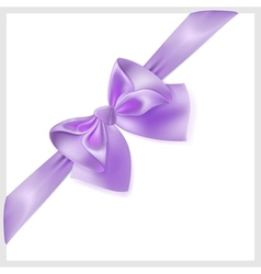 Violet bow with ribbon located diagonally vector