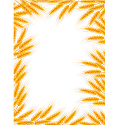 Wheat frame spikelets blank template for your vector