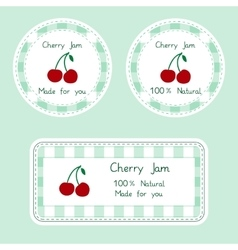 Fruit collection for design Labels for homemade vector image vector image