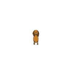 dachshund cartoon dog icon vector image vector image