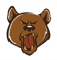 agressive bear vector image