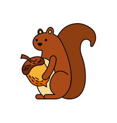 autumn season squirrel acorn forest vector image vector image