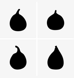 common fig fruits vector image