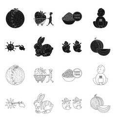 design test and synthetic icon set of vector image
