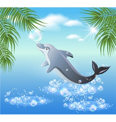dolphins leaps vector image
