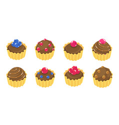 fancy cupcake chocolate set different types cakes vector image