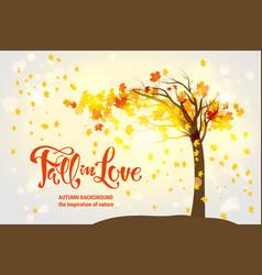 maple fall tree vector image