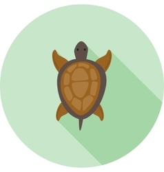 Pet Turtle vector