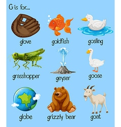 Poster letter g and many words vector
