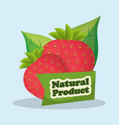 strawberry natural product market design vector image