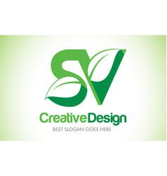 sv green leaf letter design logo eco bio leaf vector image