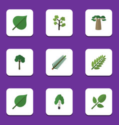 Flat icon ecology set of baobab evergreen vector