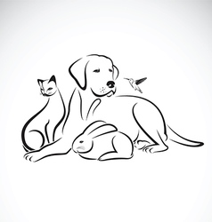 Group pets on white background vector