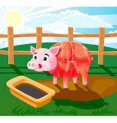 Pig sausage vector