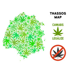 Royalty free cannabis leaves style thassos greek vector