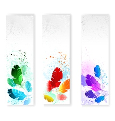 Three Banners with Colored Feathers vector