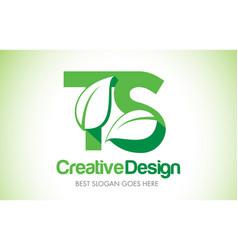 ts green leaf letter design logo eco bio leaf vector image