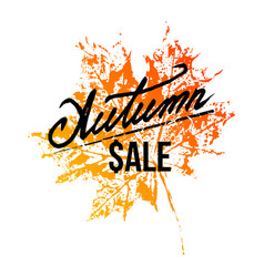 autumn sale lettering with maple leaf vector image