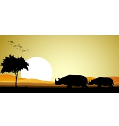 couple rhino silhouette vector image