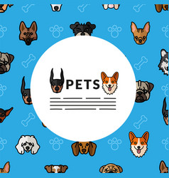 Dogs pets mascots breed characters heads pattern vector