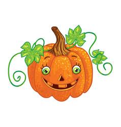 halloween character pumpkin isolated one vector image