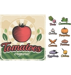 Poster With Vegetables In Retro Style vector