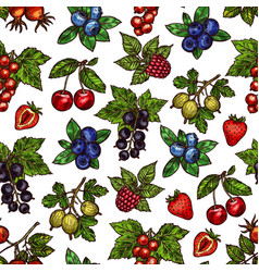 seamless pattern berries with leaves sketches vector image