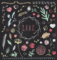 Hand Drawn Vintage Chalkboard Nature Elements Set vector image vector image