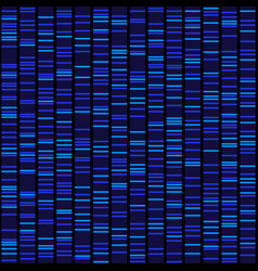 blue dna sequence results on black seamless vector image