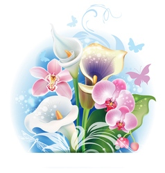 bouquet orchid and calla flowers vector image