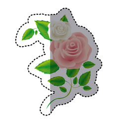 color roses with squere petals and leaves icon vector image