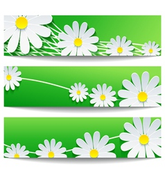Set of floral banners with chamomile vector