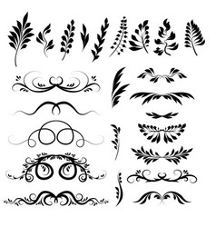 set plant elements doodle vector image