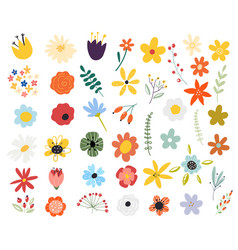 set spring colorful flowers floral vector image
