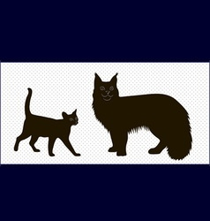 silhouettes of Maine Coon cats and the Abyssinian vector image