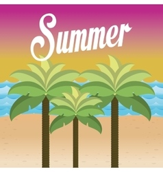 summer palms tree vector image
