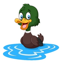 Cartoon ducks floats on water vector image