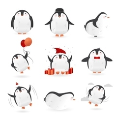 Collection of cute penguins characters Set of vector image vector image
