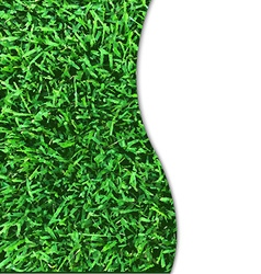Grass Texture Poster vector image