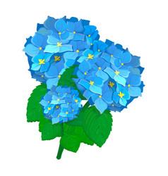 Beautiful flower bouquet design decoration vector