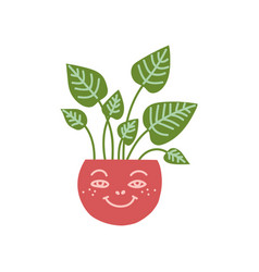 Dieffenbachia house plant growing in cute pot vector