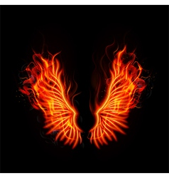 Fire burning wings vector image