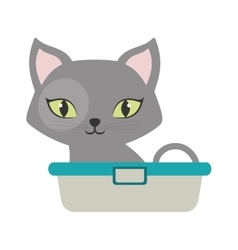 gray small cat sitting green eyes bathtub vector image
