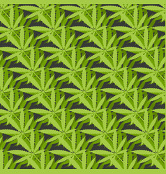 marijuana leaves geometric seamless pattern on vector image