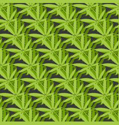 marijuana leaves geometric seamless pattern vector image