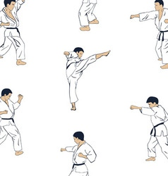 men engaged in karate vector image