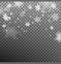 snowflakes decoration effect eps 10 vector image